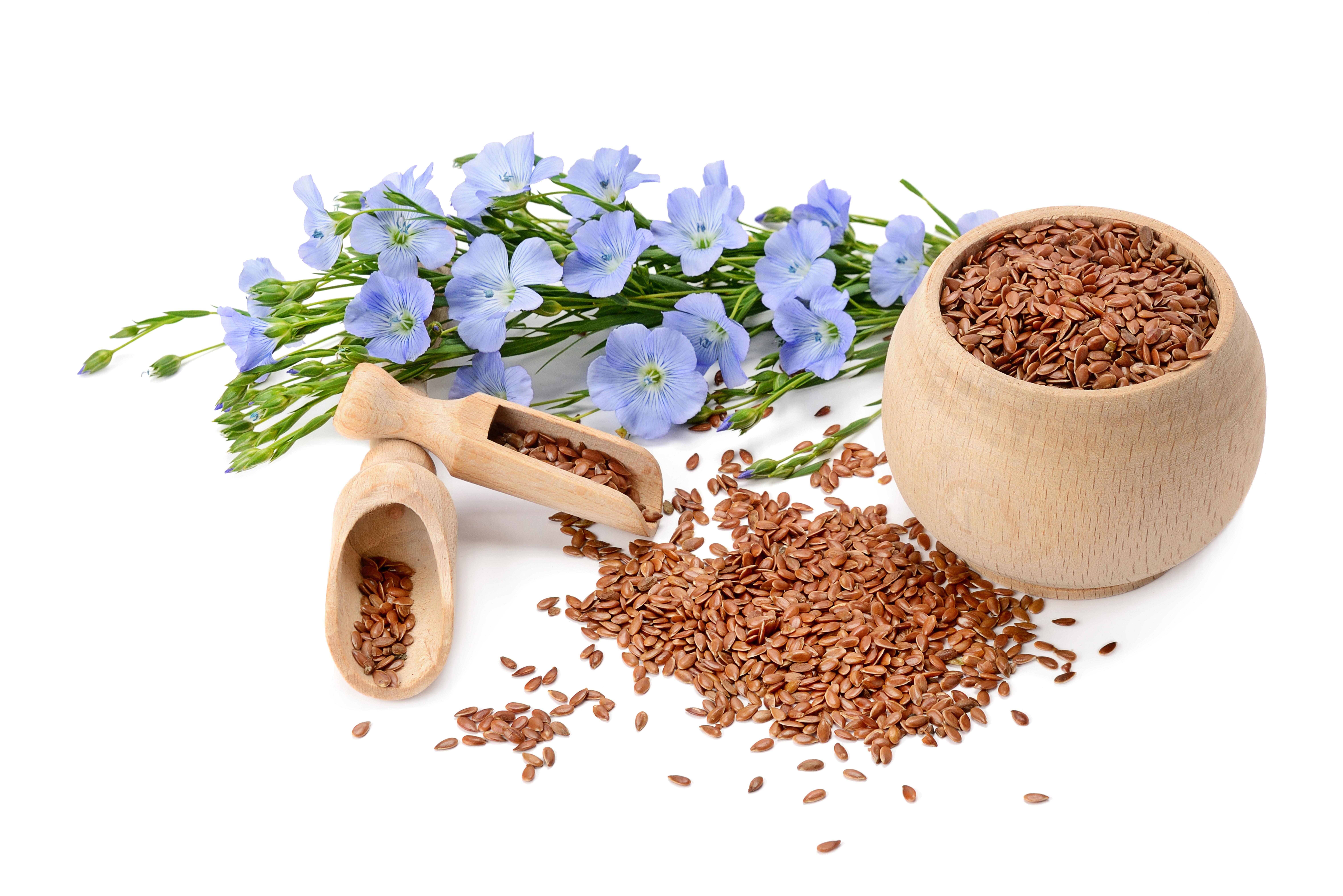 Semillas de lino orgánicas